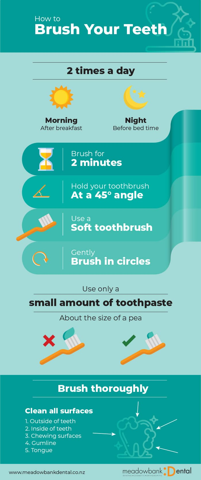 How to brush your teeth infographic - How to brush your teeth correctly
